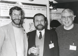 Manuel Nieto-Sampedro, Francisco Mora y Paul D. Coleman. Workshop Deteriotation, stability and regeneration of the brain during normal aging, 1995