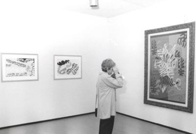 Vista parcial de la exposición Matisse: Espíritu y sentido Obra sobre papel