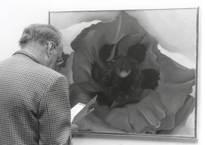 Vista parcial de la exposición Georgia O'Keeffe: Naturalezas íntimas