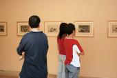 Vista parcial. Exposición Tauromaquia, Goya y Picasso, 2005