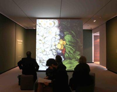 Rueda de prensa exposición Giuseppe Arcimboldo. Dos pinturas de Flora