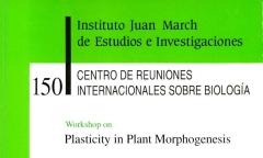 https://cdndigital.march.es/fedora/objects/fjm-pub:1335/datastreams/TN_S/content