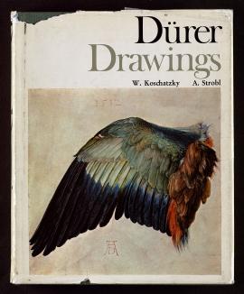 Dürer drawings in the Albertina