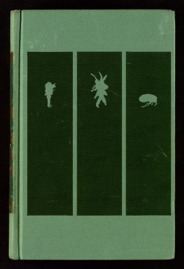 Three Märchen of E.T.A. Hoffmann